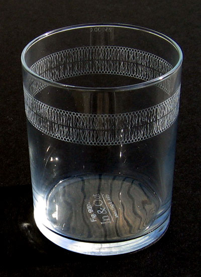 Fig. 1: lipid bilayer on a water glass